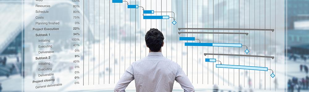 Person sichtet ein Projektdiagramm - wie hinter den Kulissen der EDI-Abteilung Project Delivery